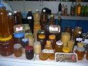 Продам Мед разнотравье Большенарым 800 тг/кг,  горный Катон 1800тг/кг